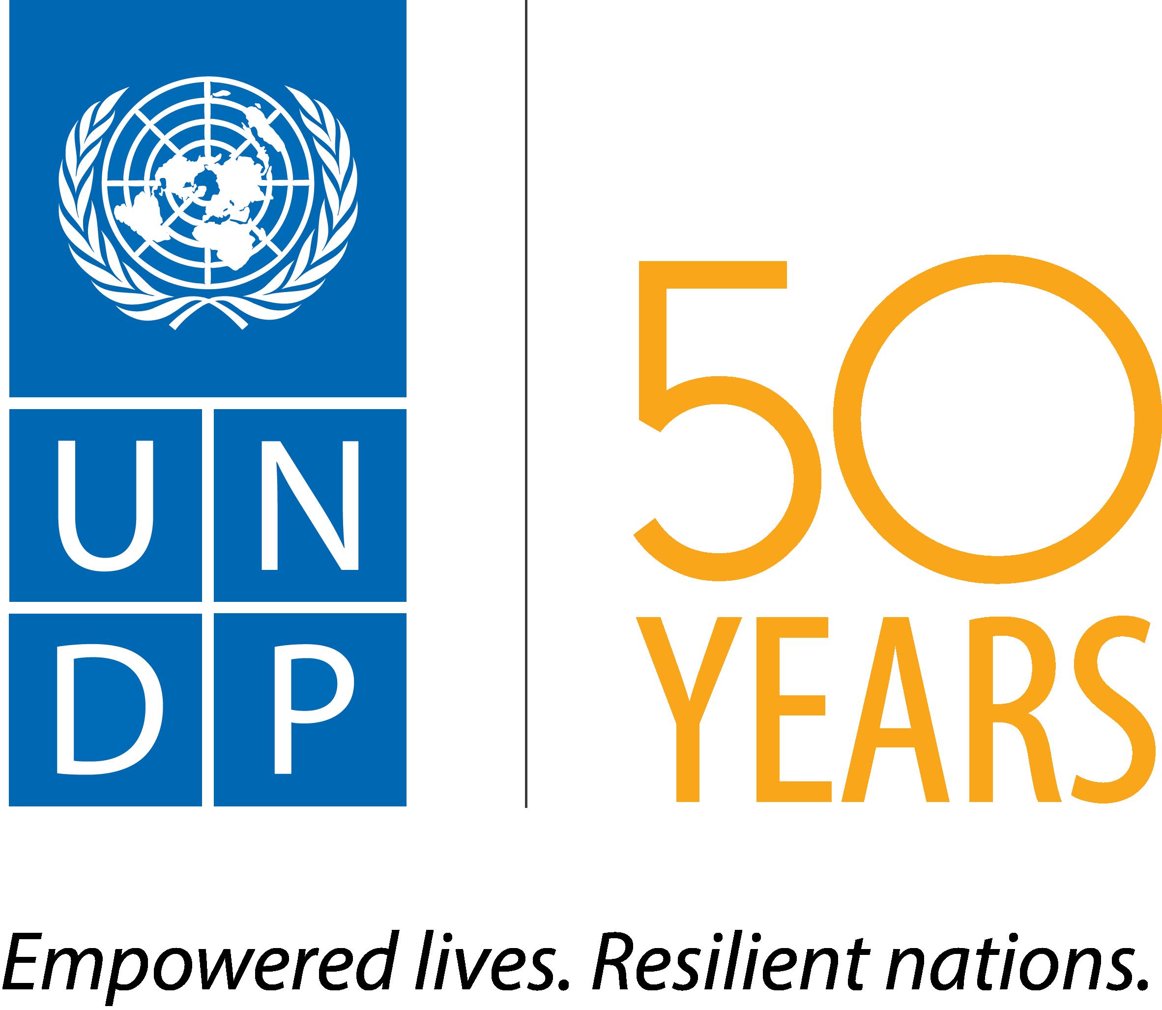 un_uzb_img_undp_logo
